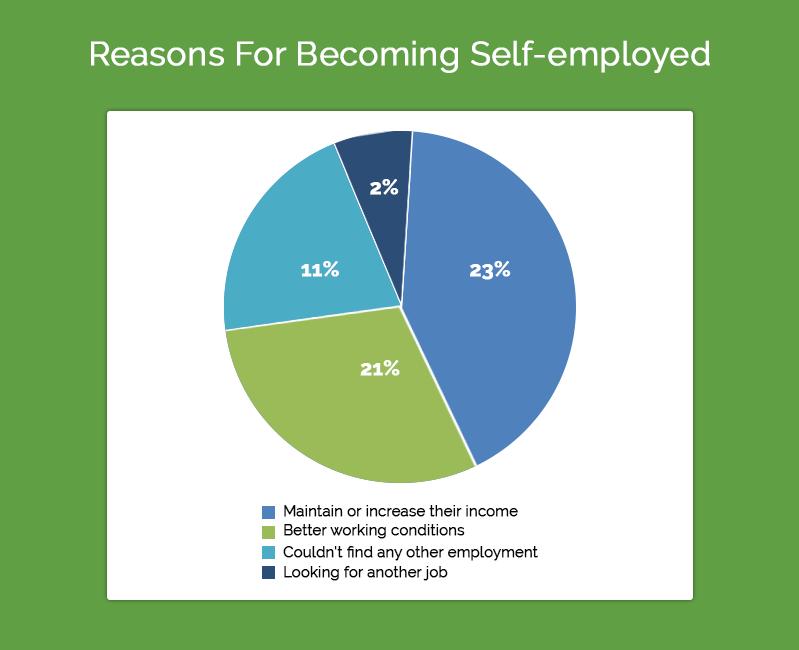 Data Chart for Self Employed Loan